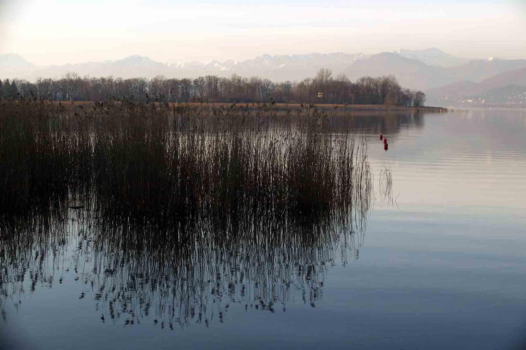 Lago 114